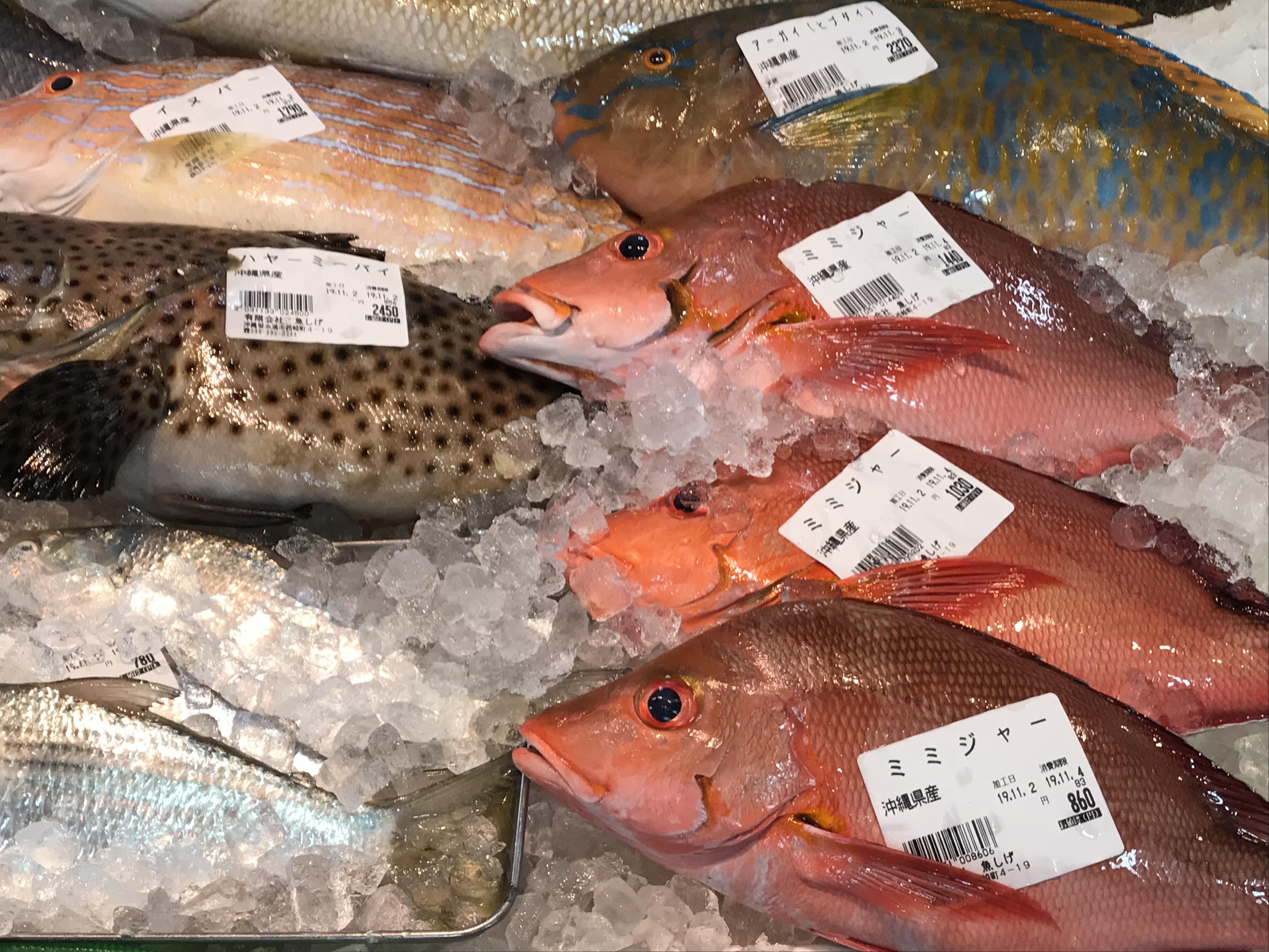 糸満の道の駅は観光にぴったり!沖縄の珍しい魚が食べられる!